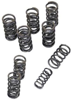 High Rev Dual Valve Springs for VW Type 1 Engine