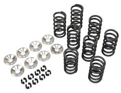 High Rev Single Valve Spring Kit for VW Type 1 Engine